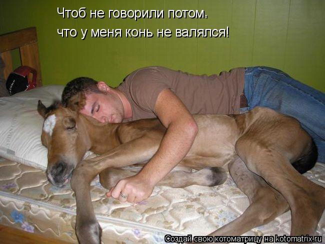 Котоматрица: Чтоб не говорили потом , что у меня конь не валялся!