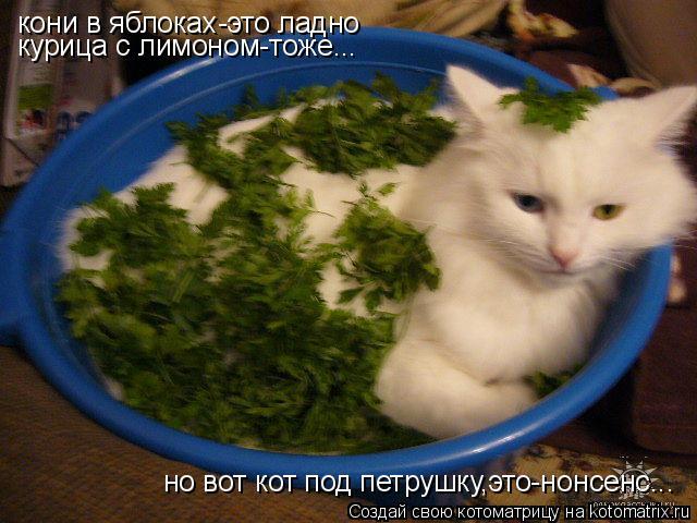 Котоматрица: кони в яблоках-это ладно курица с лимоном-тоже... но вот кот под петрушку,это-нонсенс...