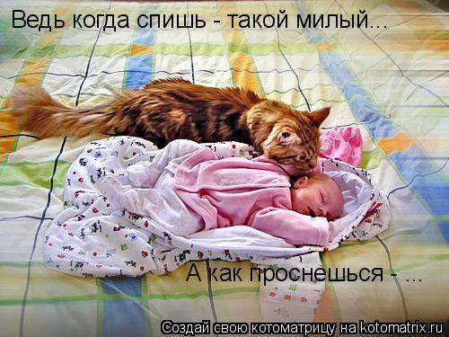 Котоматрица: Ведь когда спишь - такой милый...  А как проснешься - ...