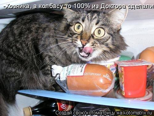 Котоматрица: -Хозяйка, а колбасу то 100% из Доктора сделали !!!
