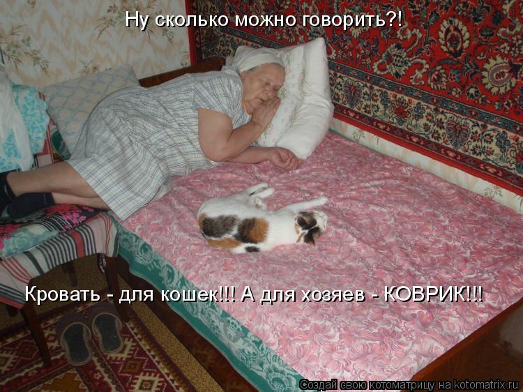 Котоматрица: Ну сколько можно говорить?! Кровать - для кошек!!! А для хозяев - КОВРИК!!!