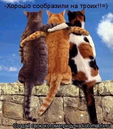 Котоматрица: -Хорошо сообразили на троих!!=)
