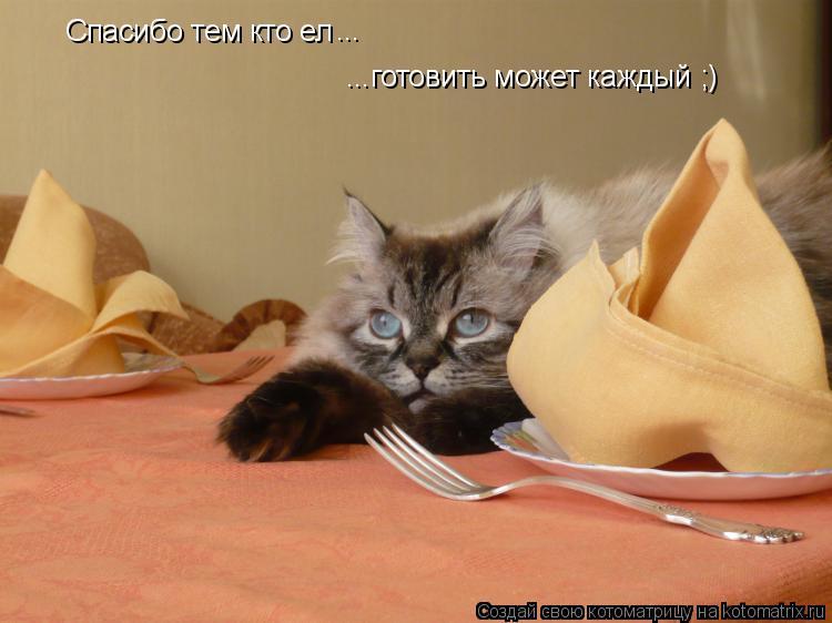 Котоматрица: Спасибо тем кто ел  ...готовить может каждый ;) ...
