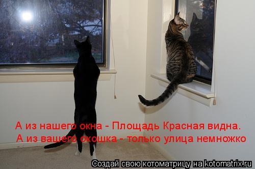 Котоматрица: А из нашего окна - Площадь Красная видна.  А из вашего окошка - только улица немножко