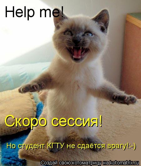 Котоматрица: Help me! Скоро сессия! Но студент КГТУ не сдаётся врагу!:-)