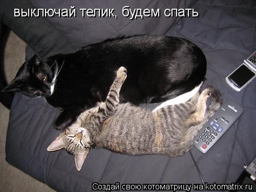 Котоматрица: выключай телик, будем спать