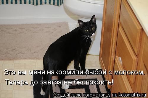 Котоматрица: Это вы меня накормили рыбой с молоком. Теперь до завтра не беспокоить!