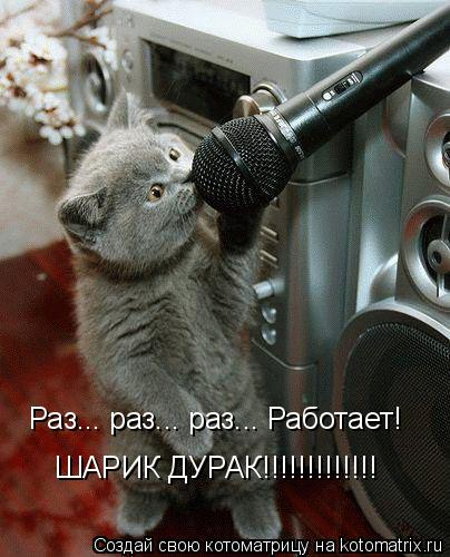 Котоматрица: Раз... раз... раз... Работает! ШАРИК ДУРАК!!!!!!!!!!!!!