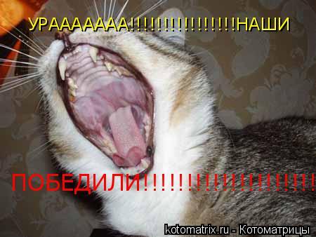 Котоматрица: УРААААААА!!!!!!!!!!!!!!!!НАШИ ПОБЕДИЛИ!!!!!!!!!!!!!!!!!!!!!!!!!