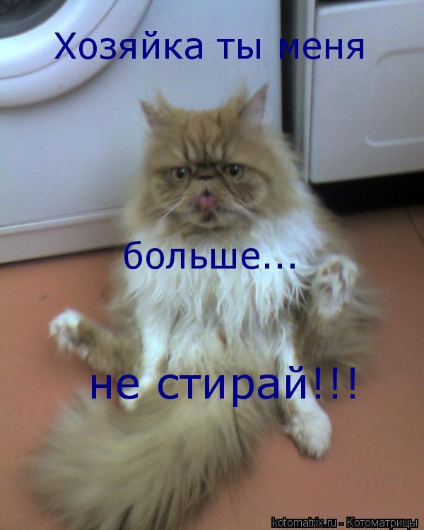 Котоматрица: Хозяйка ты меня больше... не стирай!!!