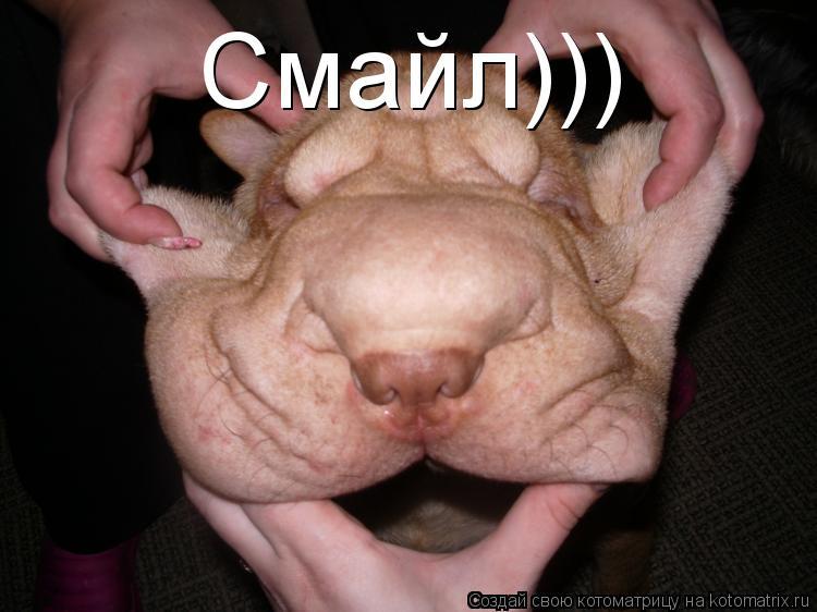 Котоматрица: Смайл)))