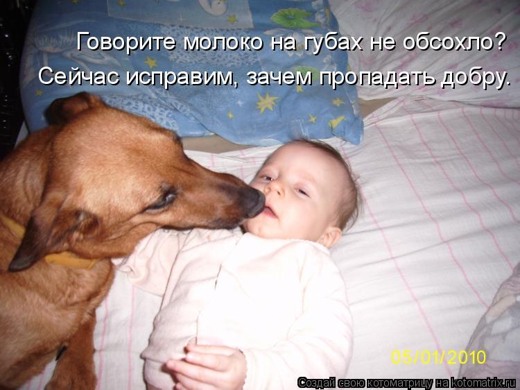 Котоматрица: Говорите молоко на губах не обсохло? Сейчас исправим, зачем пропадать добру.