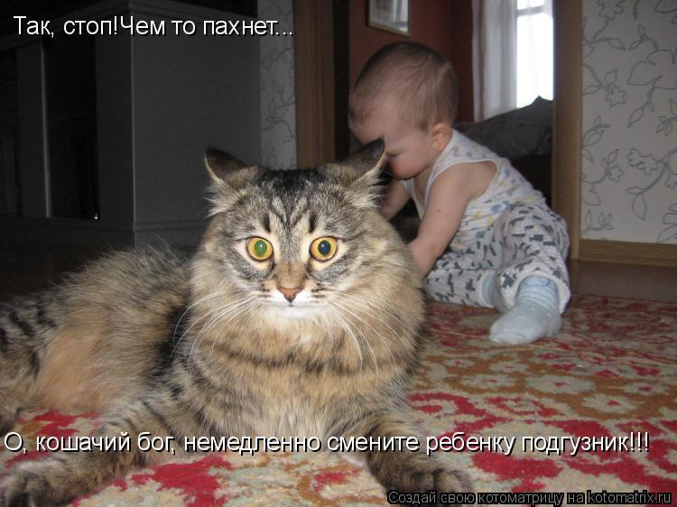 Котоматрица: Так, стоп!Чем то пахнет... О, кошачий бог, немедленно смените ребенку подгузник!!!