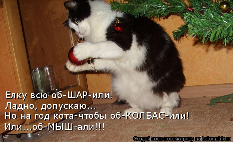 Котоматрица: Елку всю об-ШАР-или! Ладно, допускаю... Но на год кота-чтобы об-КОЛБАС-или! Или...об-МЫШ-али!!!