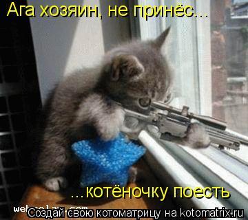 Котоматрица: ...котёночку поесть Ага хозяин, не принёс...