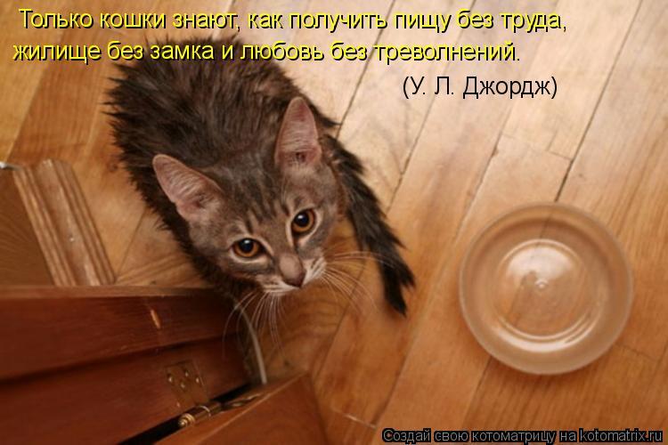 Котоматрица: Только кошки знают, как получить пищу без труда,  жилище без замка и любовь без треволнений.   (У. Л. Джордж)