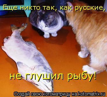 Котоматрица: Еще никто так, как русские,  не глушил рыбу!