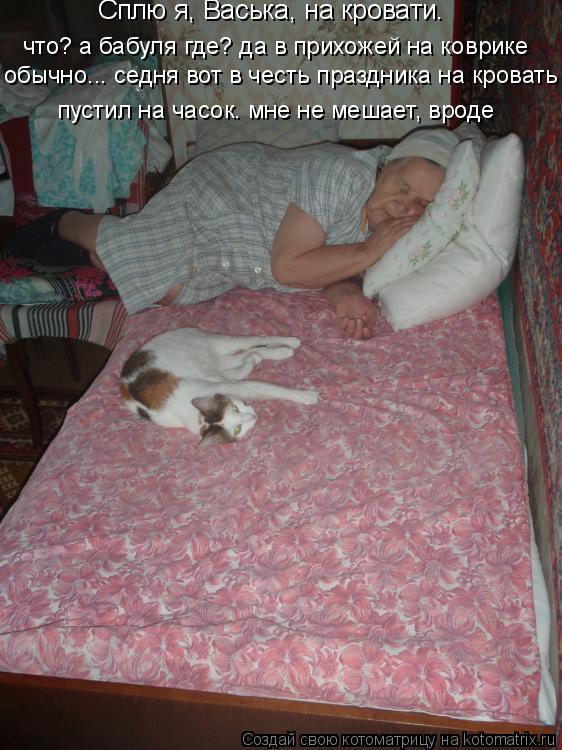 Котоматрица: что? а бабуля где? да в прихожей на коврике  обычно... седня вот в честь праздника на кровать пустил на часок. мне не мешает, вроде Сплю я, Васьк