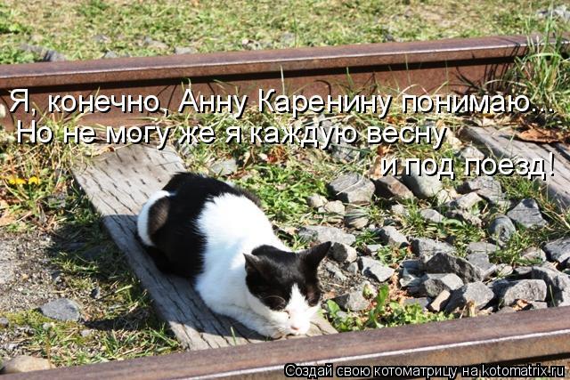 Котоматрица: Я, конечно, Анну Каренину понимаю... Но не могу же я каждую весну  и под поезд!