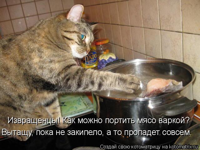 Котоматрица: Извращенцы! Как можно портить мясо варкой? Вытащу, пока не закипело, а то пропадет совсем.