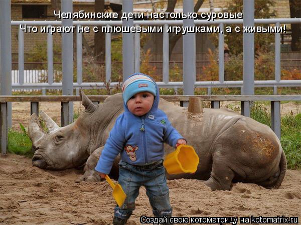 Котоматрица: Челябинские дети настолько суровые Что играют не с плюшевыми игрушками, а с живыми!