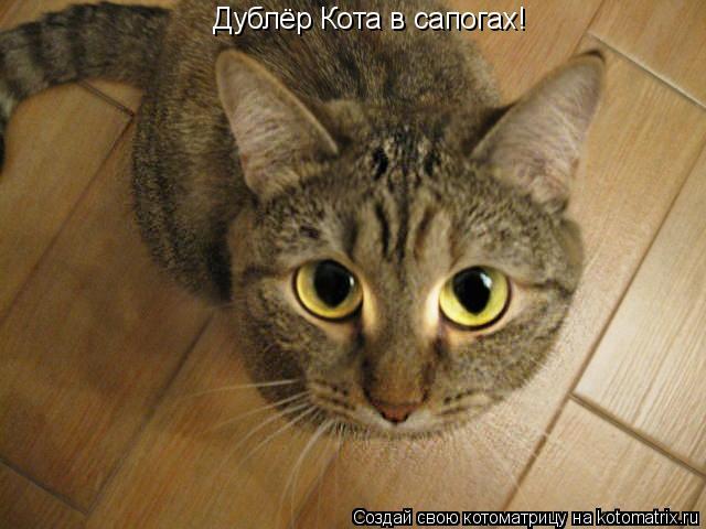 Котоматрица: Дублёр Кота в сапогах!