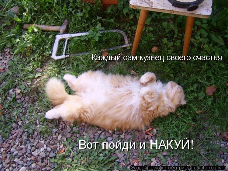 Котоматрица: Каждый сам кузнец своего счастья Вот пойди и НАКУЙ!