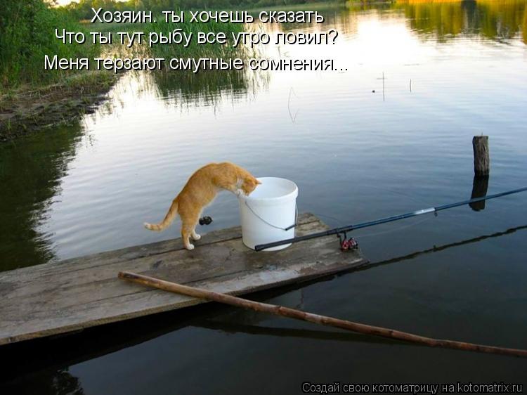 Котоматрица: Хозяин. ты хочешь сказать Что ты тут рыбу все утро ловил? Меня терзают смутные сомнения...