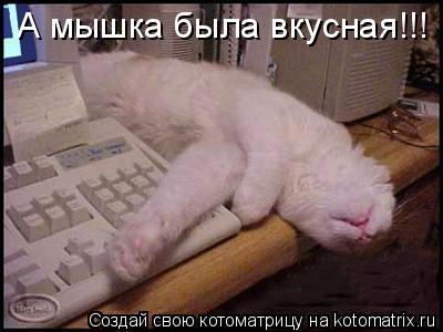 Котоматрица: А мышка была вкусная!!!