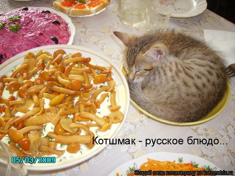 Котоматрица: Котшмак - русское блюдо...