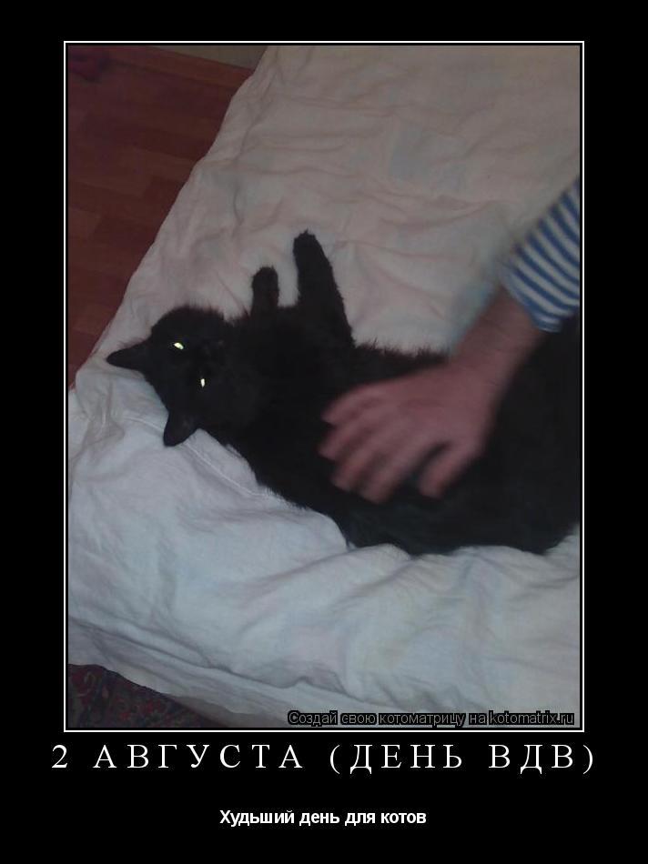 Котоматрица: 2 августа (День ВДВ) Худьший день для котов