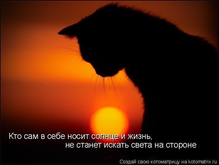 Котоматрица: Кто сам в себе носит солнце и жизнь,  не станет искать света на стороне