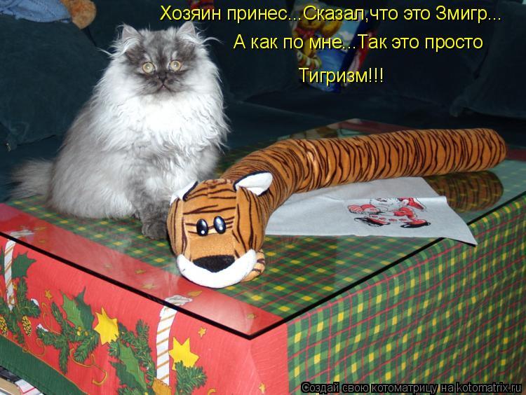 Котоматрица: Хозяин принес...Сказал,что это Змигр...  А как по мне...Так это просто  Тигризм!!!