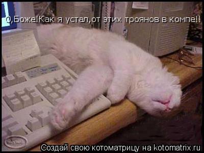 Котоматрица: О,Боже!Как я устал,от этих троянов в компе!!