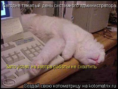 Котоматрица: Сегодня тяжелый день системного администратора.. Зато успел на завтра работы не схватить