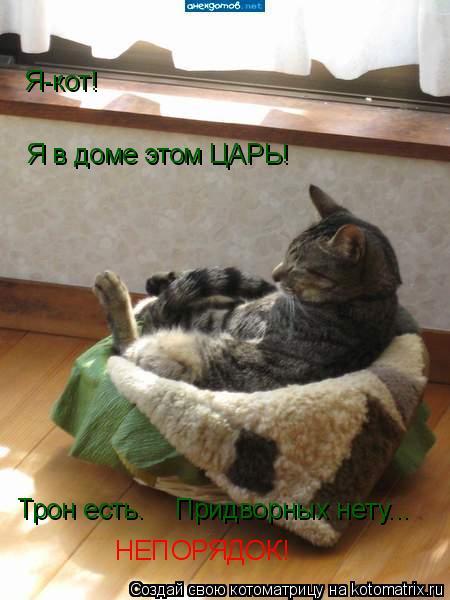 Котоматрица: Я-кот! Я в доме этом ЦАРЬ! Трон есть. Придворных нету... НЕПОРЯДОК!