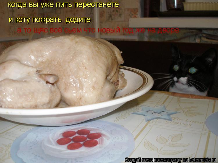 Котоматрица: когда вы уже пить перестанете  и коту пожрать  додите а то щяс всё сьем что новый год же на дворе