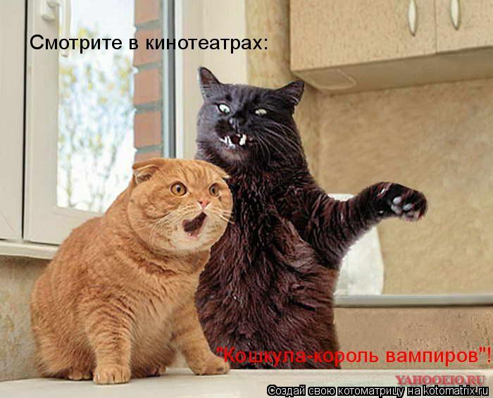 """Котоматрица: Смотрите в кинотеатрах: """"Кошкула-король вампиров""""!"""