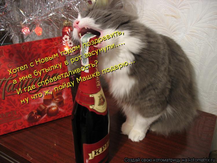 Котоматрица: Хотел с Новым годом поздравить,  а мне бутылку в рот засунули....  И где справетдливость?  ну что ж, пойду Машке подарю...