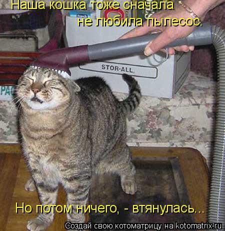 Котоматрица: Наша кошка тоже сначала  не любила пылесос.   Но потом ничего, - втянулась...