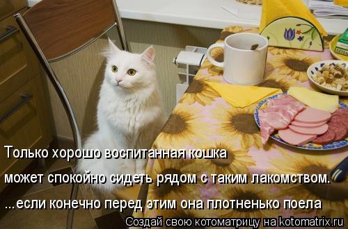 Котоматрица: Только хорошо воспитанная кошка может спокойно сидеть рядом с таким лакомством. ...если конечно перед этим она плотненько поела