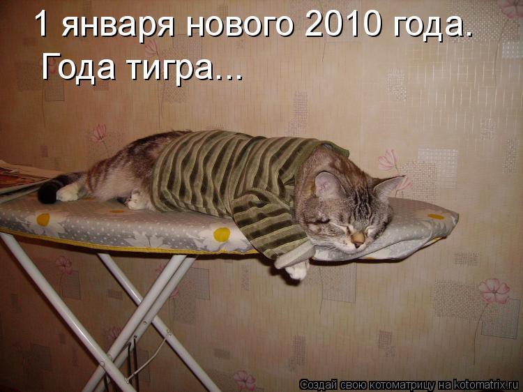 Котоматрица: 1 января нового 2010 года. Года тигра...