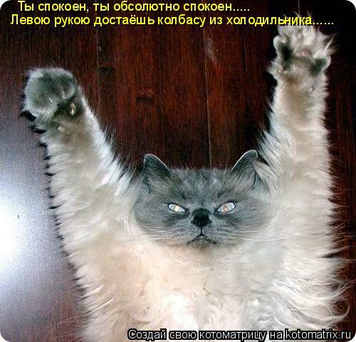 Котоматрица: Ты спокоен, ты обсолютно спокоен..... Левою рукою достаёшь колбасу из холодильника......
