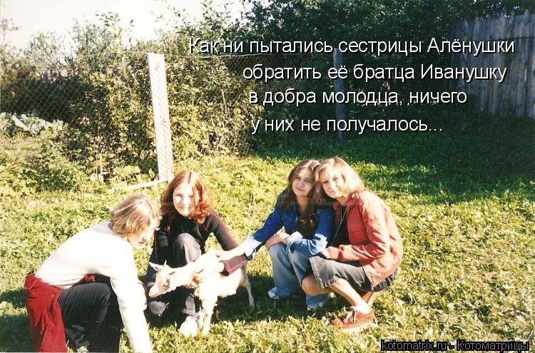 Котоматрица: Как ни пытались сестрицы Алёнушки  обратить её братца Иванушку  в добра молодца, ничего  у них не получалось...