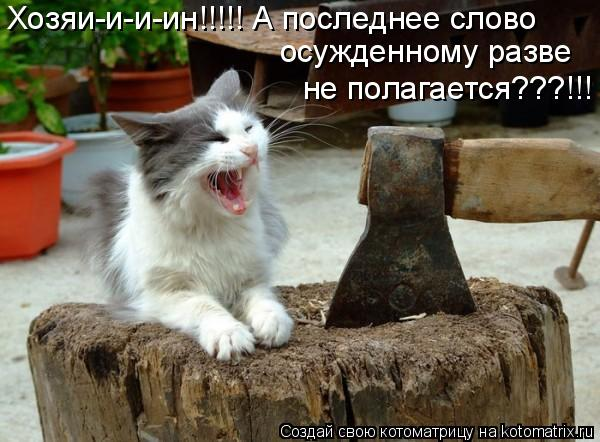 Котоматрица: Хозяи-и-и-ин!!!!! А последнее слово  осужденному разве  не полагается???!!!
