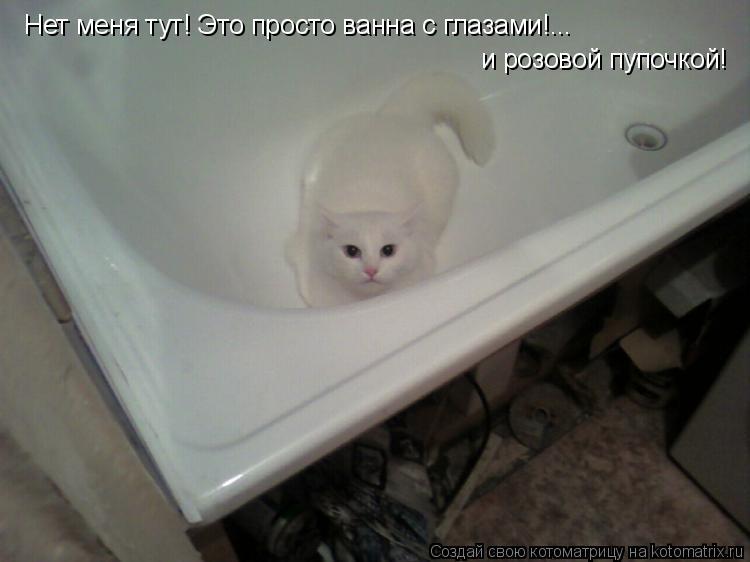 Котоматрица: Нет меня тут! Это просто ванна с глазами!... и розовой пупочкой!