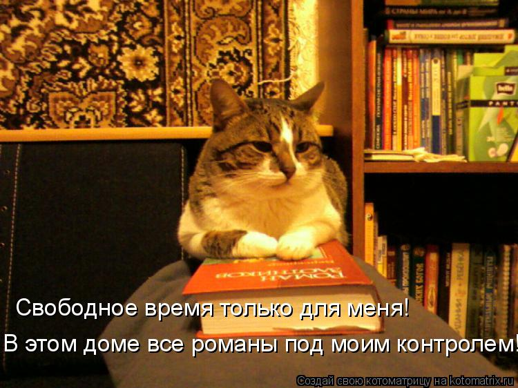 Котоматрица: Свободное время только для меня! В этом доме все романы под моим контролем!