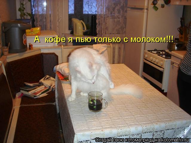 Котоматрица: А  кофе я пью только с молоком!!!