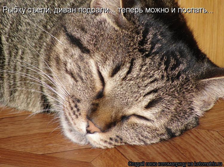 Котоматрица: Рыбку съели, диван подрали... теперь можно и поспать...