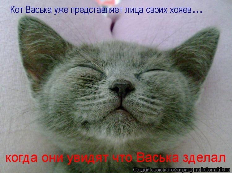 Котоматрица: Кот Васька уже представляет лица своих хояев  ... когда они увидят что Васька зделал